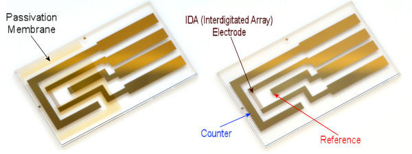 IDA(Interdigitated Array) Electrode Au 2 um