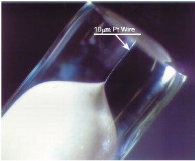 Micro Pt electrode 10µm