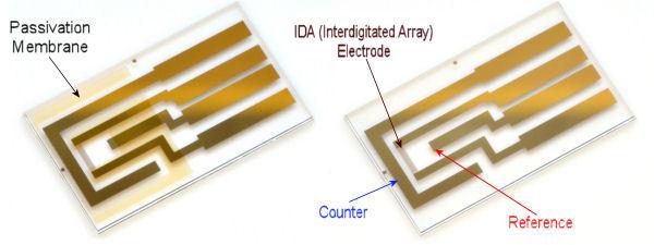 IDA(Interdigitated Array) Electrode Au 2 um