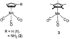Fig.8-2  Manganese clusters